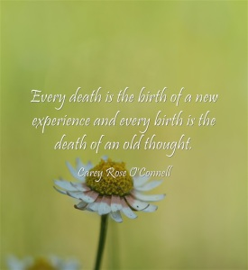 Every-death-is-the-birth